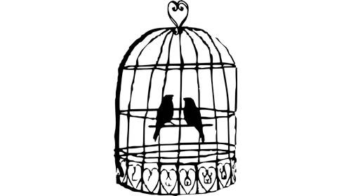 birdcage graphic