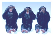 3 monkeys hear no evil see no evil speak no evil
