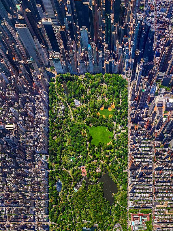 Aerial Photo of Central Park NYC