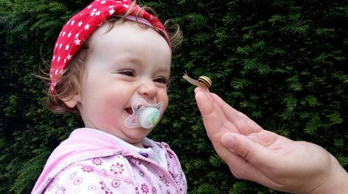 baby looking at a snail