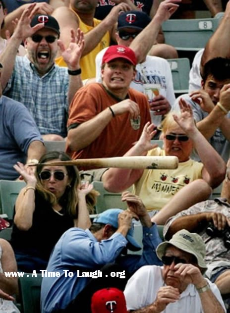 baseball bat flying into a crowd