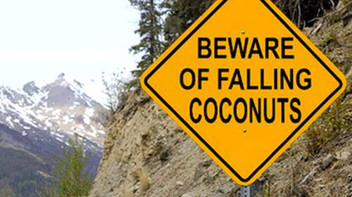 sign beware of falling coconuts