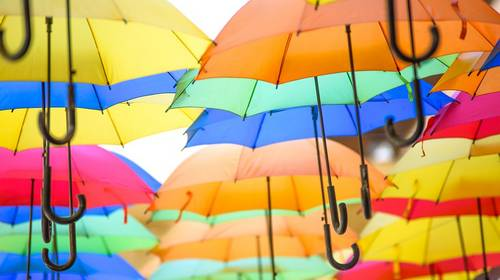multi colored umbrellas