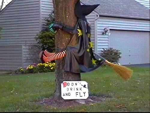 don't drink and fly witch flies into tree