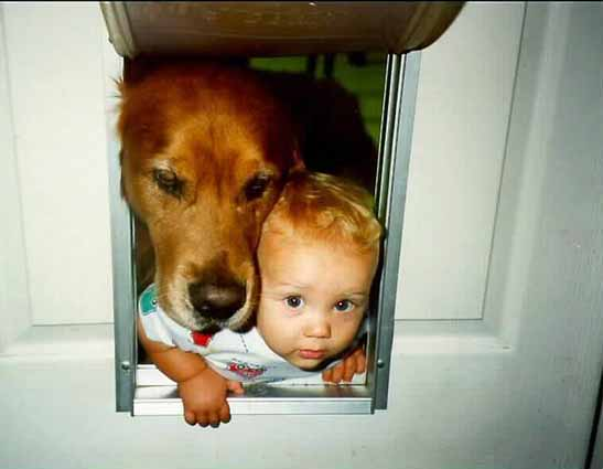kid in dog door
