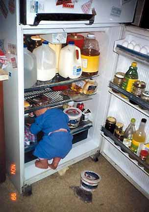 kid in fridge