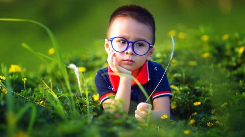 little boy sitting in the grass