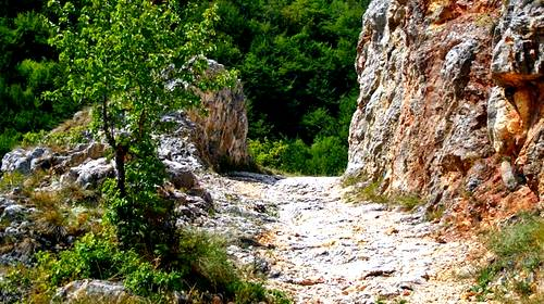 rocky highway