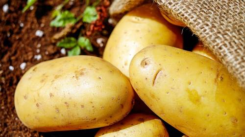 potatoes in a burlap bag