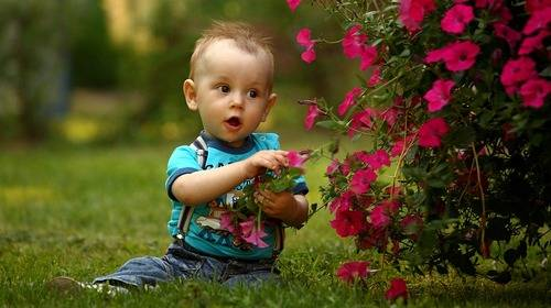 toddler and flowers