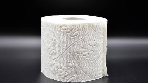 Roll of quilted toilet paper